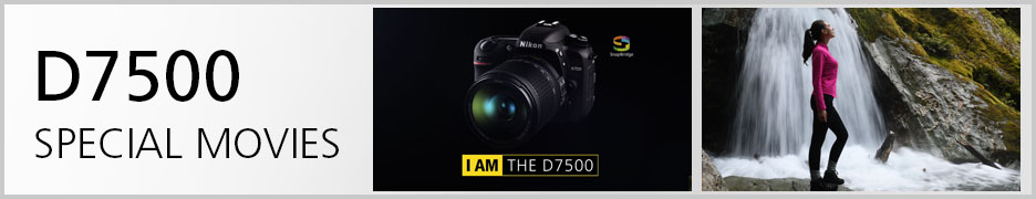 D7500 Special Movies