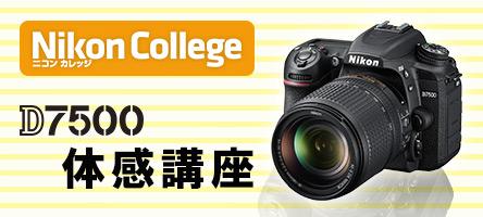 ニコンカレッジ<br>「D7500体感講座」<br>申込み好評受付中!